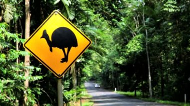 Cassowary crossing sign for a native bird — Stok video
