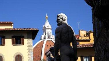 Statue of Neptune in Piazza Della Signora — Stok video