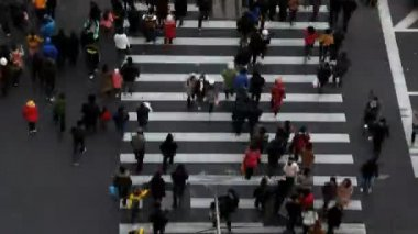 People and vehicles on pedestrian crossing road — Vídeo Stock