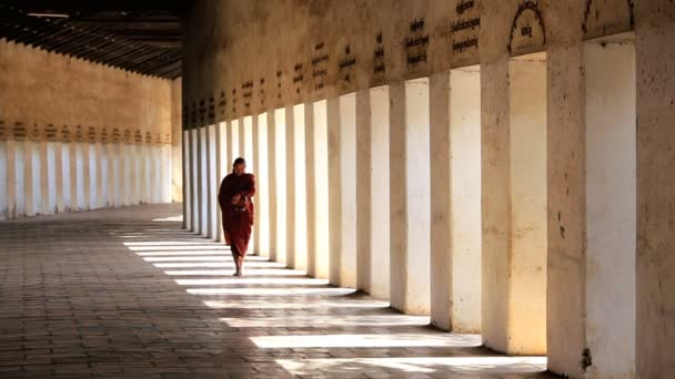 Monk  in Walkway to Shwezigon Pagoda — Vídeo de stock