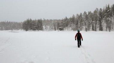 Walker approaching remote wooden cabin — Stock Video
