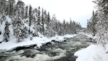 Fast flowing river in winter snow — Stockvideo