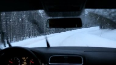 Driving motion falling snow forest road — Stock Video