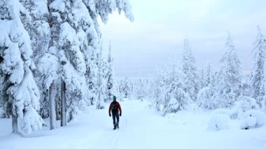 Male walker wearing snow shoes in Riisitunturi National Park — Stock Video