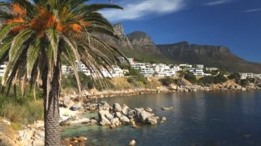 South Africa Camps Bay Cape Town people beach ocean palm — Stock Video