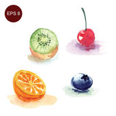 Tasty watercolor fruits and berries — Stock Vector