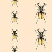 Watercolor beetle seamless background. — Fotografia Stock