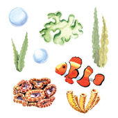 Corals, bubbles, seaweed and fish — Stock Photo