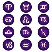 Vector Zodiac Icons — Stock Vector