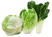 Set of three varieties of fresh lettuce isolated on a white background — Stock Photo