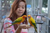 Parrot feeding on woman hand — Stock Photo