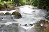 Nehir Güz — Stok fotoğraf