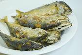 Fried mackerels on the dish — Stock Photo