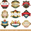 Collection of ornate labels — Stock Vector #60601005