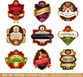 Collection of ornate labels — Vettoriale Stock