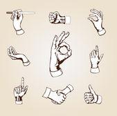 Vector hands. — Stock Vector