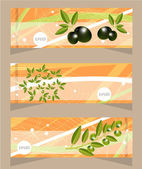 Set, collection of three orange, modern banners with pattern and olives and olives twig — Stock Vector