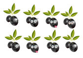 Funny set, collection of isolated, black olives with leaves and character, face - sadness, crying, surprise, anger, joy, disgust, malice, resentfulness.. — Stock Vector