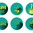 Set, group, collection of six isolated, round icons, labels, stickers with text Olive Oil, green twig with olives and leaves, olive tree, carafe, white background, long shadow — Stock Vector #70324213