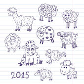 Sheep breeding. set of vector sketches — Stock Vector