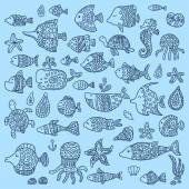 The collection of marine fish and mammals — Vecteur