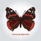 Butterfly Vanessa Atalanta. Vector illustration. — Stock Vector