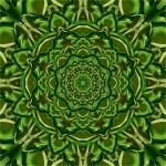 Green Kaleidoscope Flower — Stock Photo #59198413