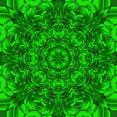 Green skin snake kaleidoscope — Stock Photo