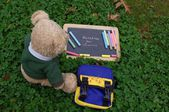 The start of the school year for teddy bear — Stock Photo