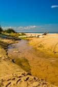Stream by the sea — Stock Photo