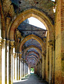 The internal layout of the abbey of San Galgano, Tuscany. — Stock Photo