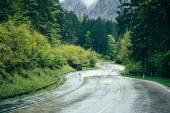 Carretera de montaña en el bosque — Foto de Stock