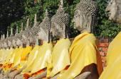 Buddha statue , Wat Yai Chaimongkol ,Thailand — Stock Photo