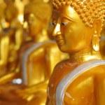 Golden buddha statue — Stock Photo #61011157