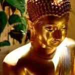 Golden buddha statue — Stock Photo #61011615