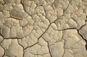 Dry cracked ground — Stock Photo