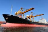Kontejnerová nákladní nákladní loď pro logistické Import/Export pozadí — Stock fotografie