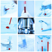 Mix of blood testing in laboratory take — Stock Photo