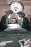 Two veterinarian surgeons in operating room — Stock Photo