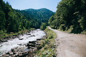 Beautiful mountain river in Carpathians — Stock Photo