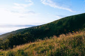 Montagnes vertes — Photo