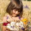 Wheat field, cornflowers, ears, blue sky, summer, girl 4-6 years — Stock Photo #71127409