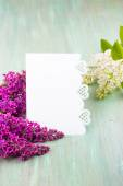 White lilac, lilac purple, white sheet of paper with hearts punc — Stockfoto