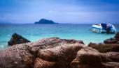 Deserted wild beach — Stock Photo