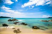 Beach  Phuket Thailand palm tree by the seabeach — Stock Photo