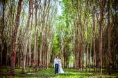 Man and woman dancing in a forest — Stock Photo