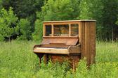 Старое пианино, брошенных в зеленое поле — Стоковое фото