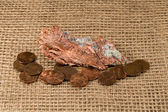 Native Copper Nugget with Copper Pennies — Photo