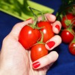 Keeping red tomatoes in hand — Stock Photo #72418577