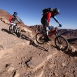 MTB bikers going downhill in the desert from mt. Sinai. — Stock Photo #63007821